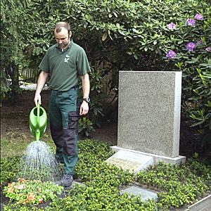 Gärtner beim Gießen des Grabes